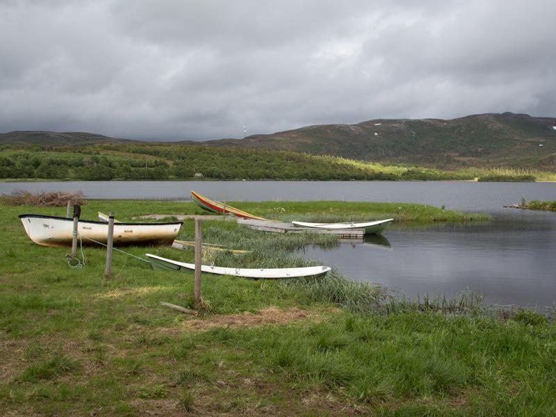 Ta en fisketur på fjellene i Åfjord!